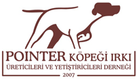 Pointer Türkiye Club